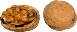 """Зачем американцы используют выражение """"в ореховой скорлупе""""?"""