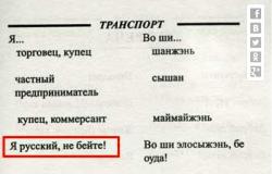 Я русский бы выучил только за то...