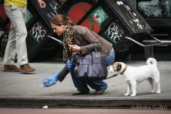 Мадлен и инфанта Кристина в NYC собирают собачье гэ