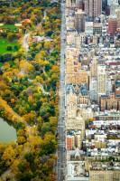 Центральный парк, Нью–Йорк