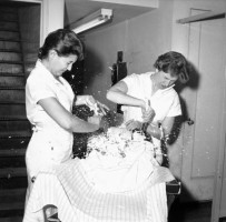 Бабах! 1958 год, Нью–Йорк