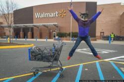 Walmart ходишь? Это же магазин для бомжей!  Смотрим, удивляемся, сравыниваем
