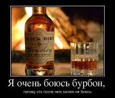 Одним из официальных символов США является виски-бурбон