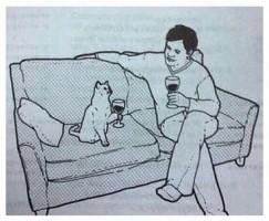 После выхода на рынок «Гав Гав Пива» дело дошло до вина для котов