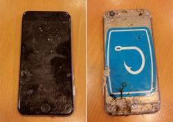 Apple пообещал восстановить данные телефона iphone, который пролежал на дне моря более 8 месяцев после исчезновения хозаина