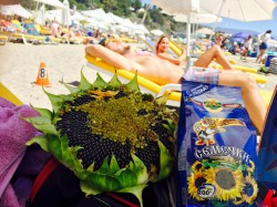It's very hot. Take Martin Sunflower Seeds to the beach with you