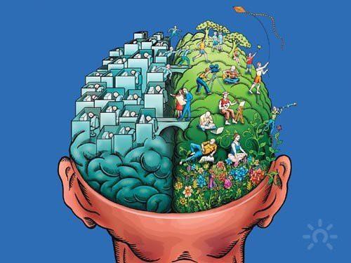 Как развить левополушарное мышление?