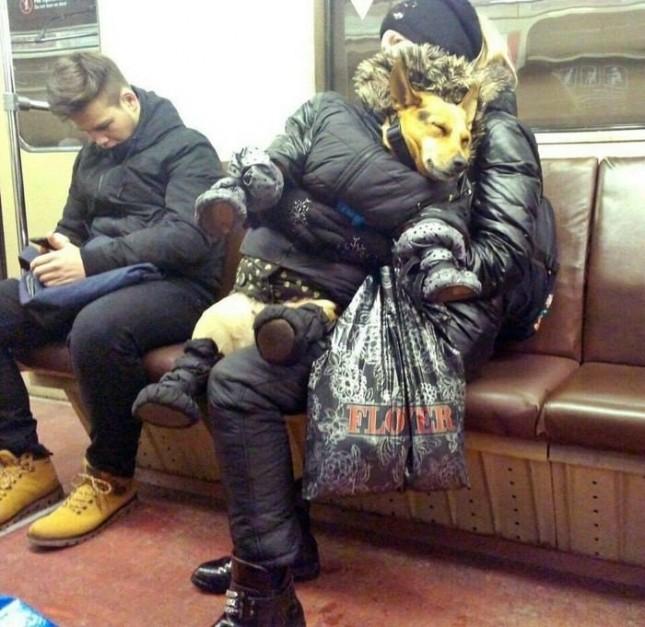 Тем в временем  в Москве