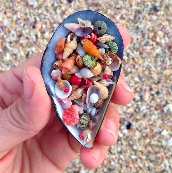 Tongue Twister 1- She Sells Seashells by the Sea Shore