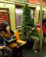 ???????????? человек в костюме елки в метро НЙ